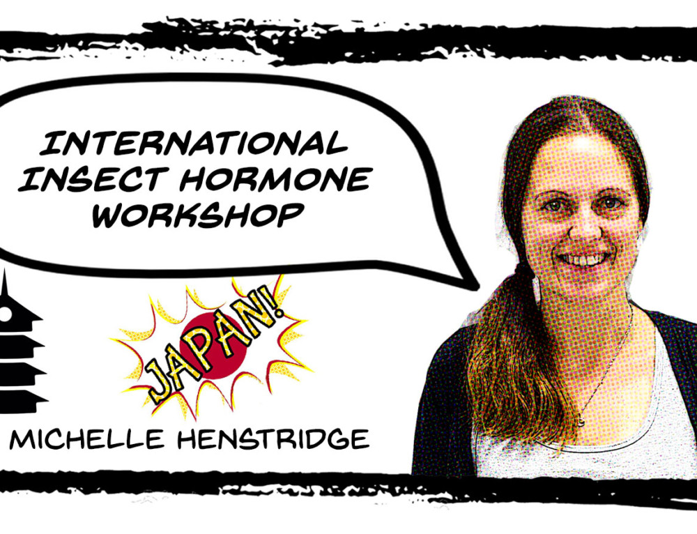 International Insect Hormone Workshop